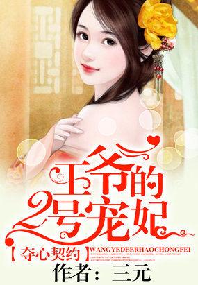 契约新欢:王爷的2号宠妃